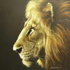 Lion_profile
