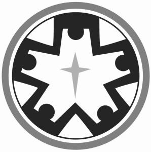 YLI-logogray