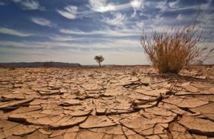 Dryness