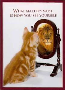 1mirror-self-reflection-image